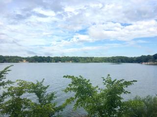 Lake Belleville